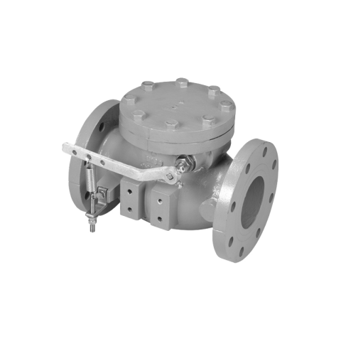 public://uploads/product/a-2600_swing_type_lever_spring_check_valve_fl_fl_bw_img_780x780.png